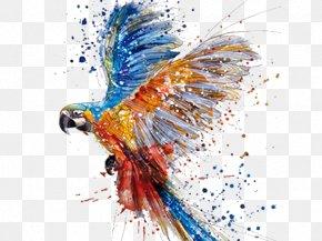 Watercolor Dancing Parrot - Parrot Watercolor Painting Drawing Art PNG