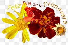 Margarita - Cut Flowers Spring Floral Design Floristry PNG