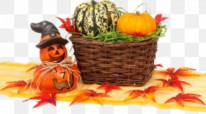 Great Pumpkin Harvest - Thanksgiving Wish Quotation Happiness Greeting Card PNG