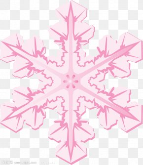 Pink Snowflake Shape - Snowflake Icon PNG