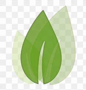 Flower Grass - Green Leaf Logo PNG