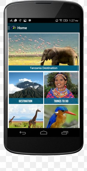 Smartphone - Smartphone Mobile App Development IPhone Android PNG