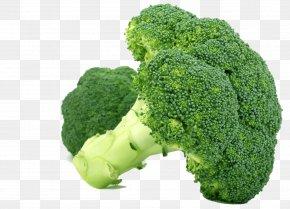 Broccoli - Broccoli Nutrient Health Nutrition Food PNG