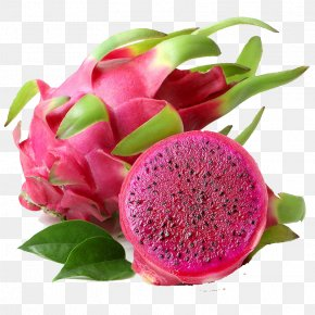 Cut Dragon Fruit - Juice Pitaya Fruit Food PNG