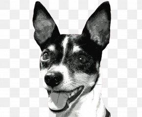 Bark - Rat Terrier Miniature Fox Terrier Toy Fox Terrier Tenterfield Terrier Teddy Roosevelt Terrier PNG