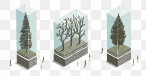 Glass Tree - Artist Drawing Illustrator Illustration PNG