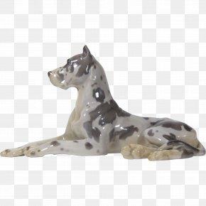 Mustang - Great Dane Dog Breed Mustang Non-sporting Group Freikörperkultur PNG