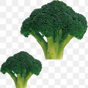 Cauliflower - Broccoli Cauliflower Cabbage Vegetable Food PNG