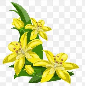 Tropical Flower - Flower Yellow Clip Art PNG