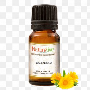 Oil - Aromatherapy Essential Oil Narrow-leaved Paperbark Carrier Oil Neroli PNG