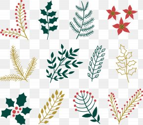 Vector Christmas Decorative Plants And Flowers - Christmas Plants Christmas Decoration Christmas Ornament Euclidean Vector PNG