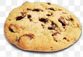 Biscuit - Chocolate Chip Cookie HTTP Cookie PNG