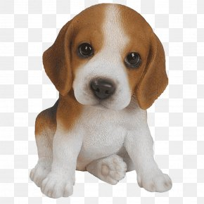 Puppy - Beagle Puppy Yorkshire Terrier Pug Pet PNG