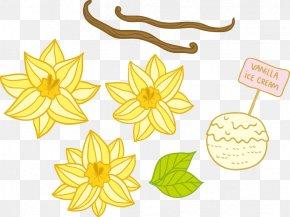 Osmanthus Ice Cream - Flower Vanilla Euclidean Vector Floral Design PNG
