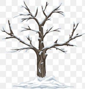 Winter Dead Trees - Season Kindergarten Garden Clip Art PNG
