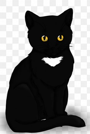 Black Cat - Bombay Cat Whiskers Mammal Domestic Short-haired Cat Carnivora PNG