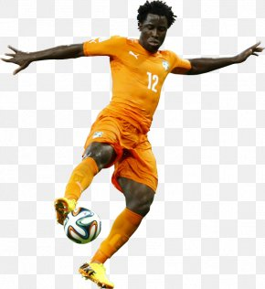 Special Members - 2014 FIFA World Cup Ivory Coast National Football Team Football Player Japan National Football Team PNG