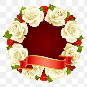 White Rose - Rose Circle Stock Illustration Clip Art PNG