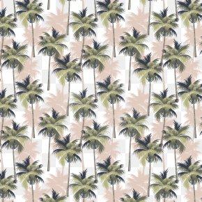 Summer Coconut Tree - Coconut Jam Arecaceae Tree PNG