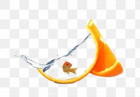Yellow Fish - Tutorial Creativity PNG