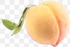 Peach Image - Saturn Peach Nectarine Galette Fruit PNG