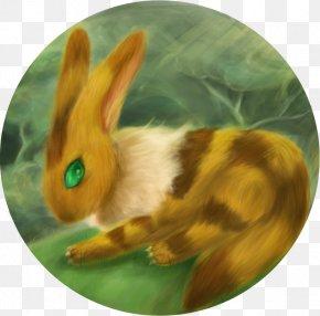Fox Squirrel - Fox Squirrel Hare Teto American Red Squirrel PNG