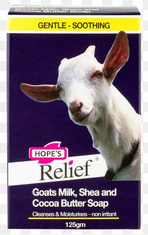 Goat - Goat Milk Soap Dermatitis PNG