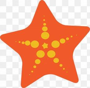 Starfish - Starfish Clip Art PNG