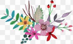 Watercolor Flowers - Petal Cut Flowers Flowering Plant Herbaceous Plant PNG