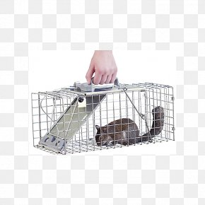 Mouse Trap - Trapping Cage Pet Door Dog Havahart PNG