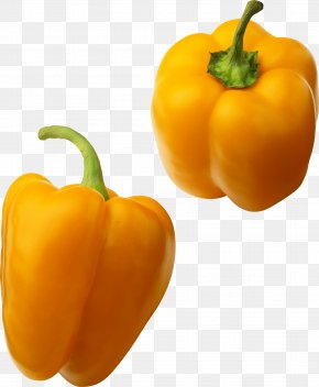 Yellow Pepper Image - Bell Pepper Facing Heaven Pepper Lingshui Li Autonomous County Habanero Vegetable PNG
