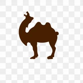 Roar Camel Logo - Dromedary Lion Roar PNG