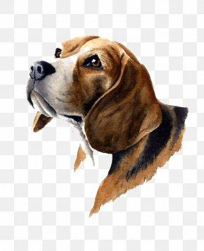 Brown Dog PNG
