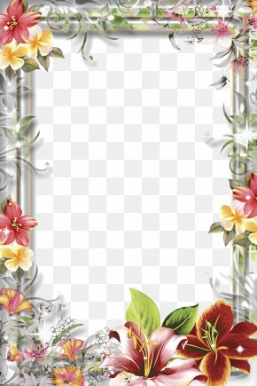 Mood Frame Transparent - Film Frame Picture Frame PNG
