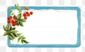 Greeting - Borders And Frames Christmas Label Picture Frames Clip Art PNG