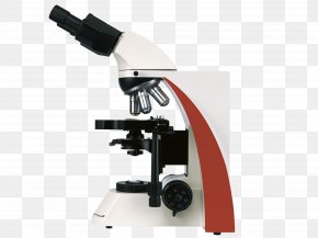 Microscope - Microscope Light-emitting Diode Laboratorios Louis Pasteur S.A.S. Objective PNG
