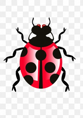 Bug Icon Transparent - Clip Art PNG