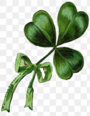 ST PATRICKS DAY - Ireland Shamrock Saint Patrick's Day Vintage Clothing Clip Art PNG