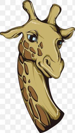 Vector Giraffe - Giraffe Cartoon Lion Illustration PNG