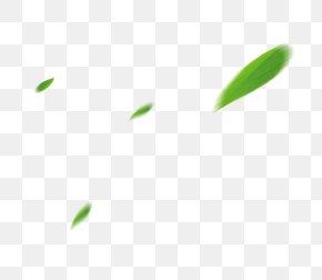 Leaf - Leaf Angle Pattern PNG