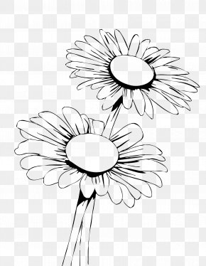 Sunflower Leaf - Princess Daisy Coloring Book Common Daisy Flower Child PNG