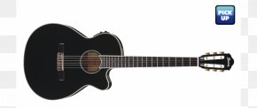 Acoustic Guitar - Guitar Amplifier Ibanez AEG10II Acoustic-Electric Guitar Classical Guitar Acoustic Guitar PNG
