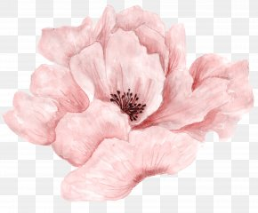 Beautiful Pink Flowers In Full Bloom - Pink Flowers Pink Flowers Watercolor Painting PNG