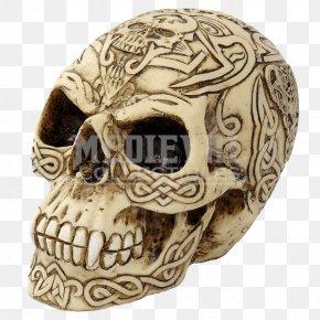 Skull - Human Skull Calavera Horn Celts PNG