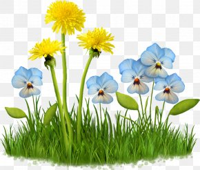 Meadow Flower - Spring Animaatio Computer Animation Clip Art PNG