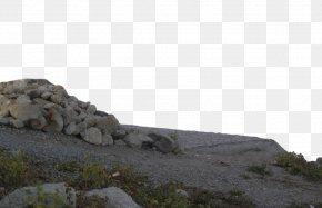 Rock Transparent - Clip Art PNG