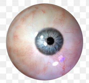 Eye - Human Eye PNG