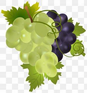 Grapes Clip Art Image - Grape Fruit Clip Art PNG