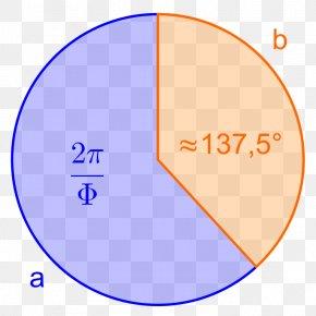 Circle - Circle Golden Ratio Angle Cirkelbue Mathematics PNG