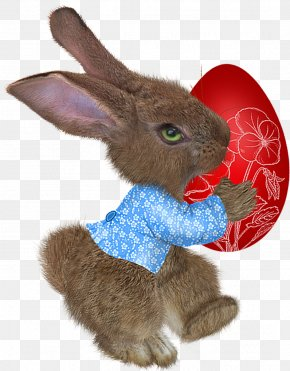 Easter Rabbit Easter - Easter Bunny Domestic Rabbit Paschal Greeting PNG